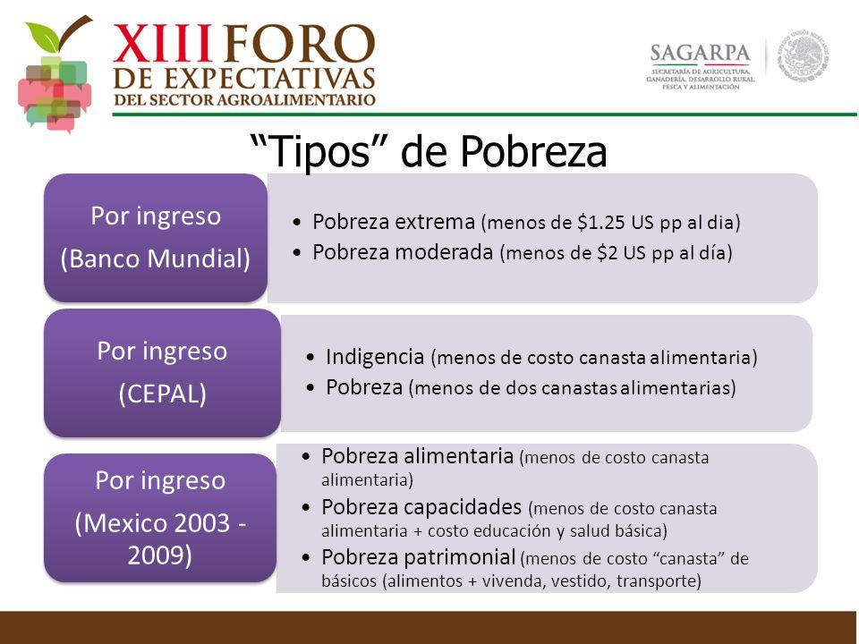 Tipos de pobreza (2) Medición multidimensional CONEVAL (oficial en México desde 2009) Carencias Rezago educativo Acceso a servicios de salud Acceso a seguridad social Condiciones de la vivienda Servicios en la vivienda Acceso a la alimentación