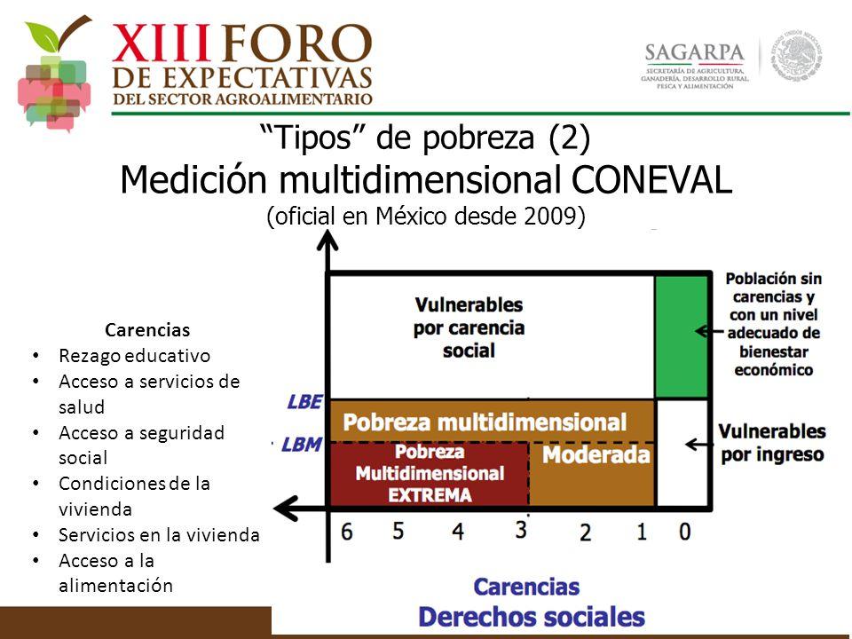 Tipos de pobreza (2) Medición multidimensional CONEVAL (oficial en México desde 2009) Carencias Rezago educativo Acceso a servicios de salud Acceso a