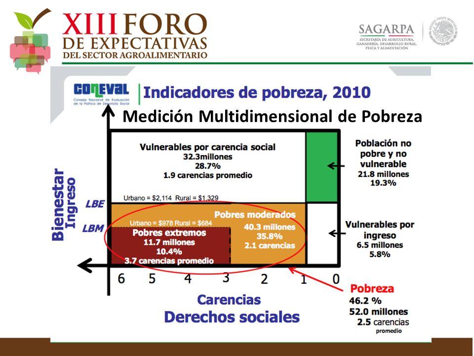 Medición Multidimensional de Pobreza