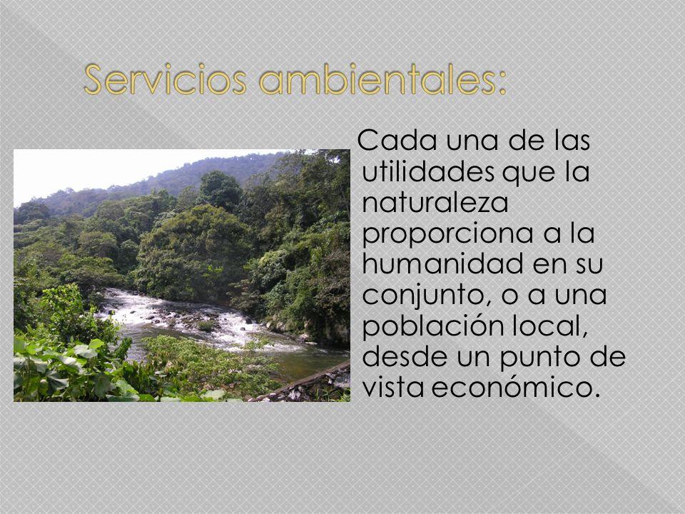 Cada una de las utilidades que la naturaleza proporciona a la humanidad en su conjunto, o a una población local, desde un punto de vista económico.