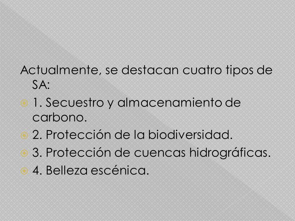 Actualmente, se destacan cuatro tipos de SA: 1. Secuestro y almacenamiento de carbono. 2. Protección de la biodiversidad. 3. Protección de cuencas hid