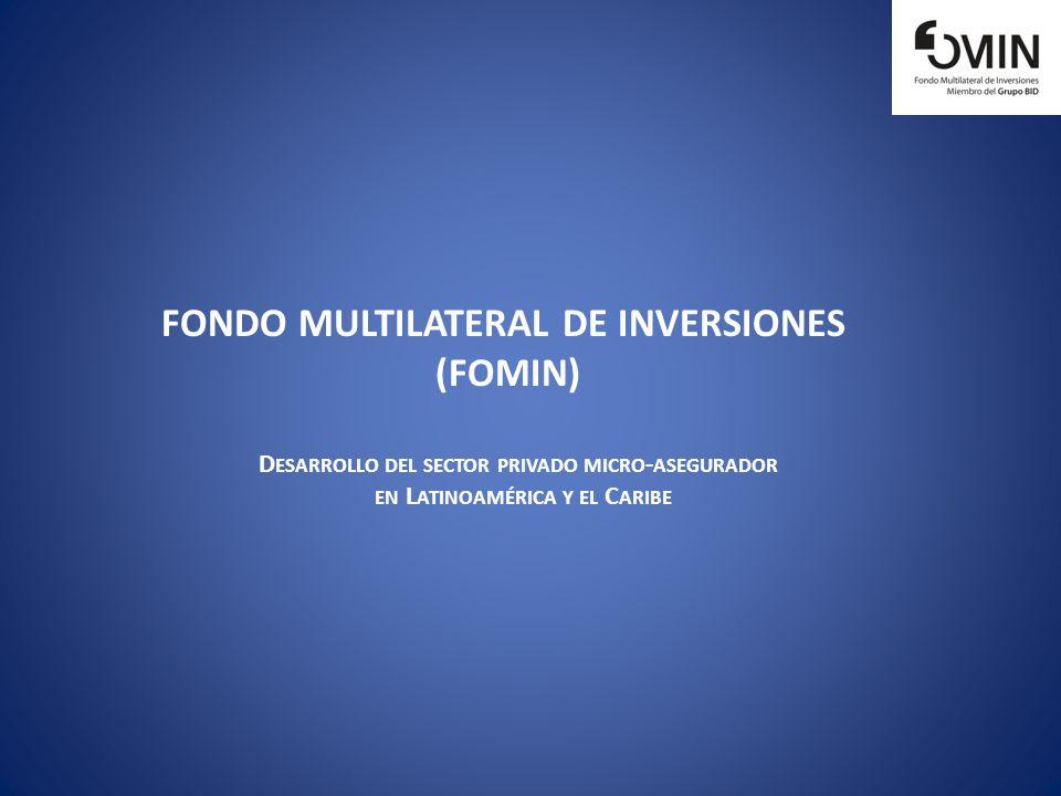 FONDO MULTILATERAL DE INVERSIONES (FOMIN) D ESARROLLO DEL SECTOR PRIVADO MICRO - ASEGURADOR EN L ATINOAMÉRICA Y EL C ARIBE