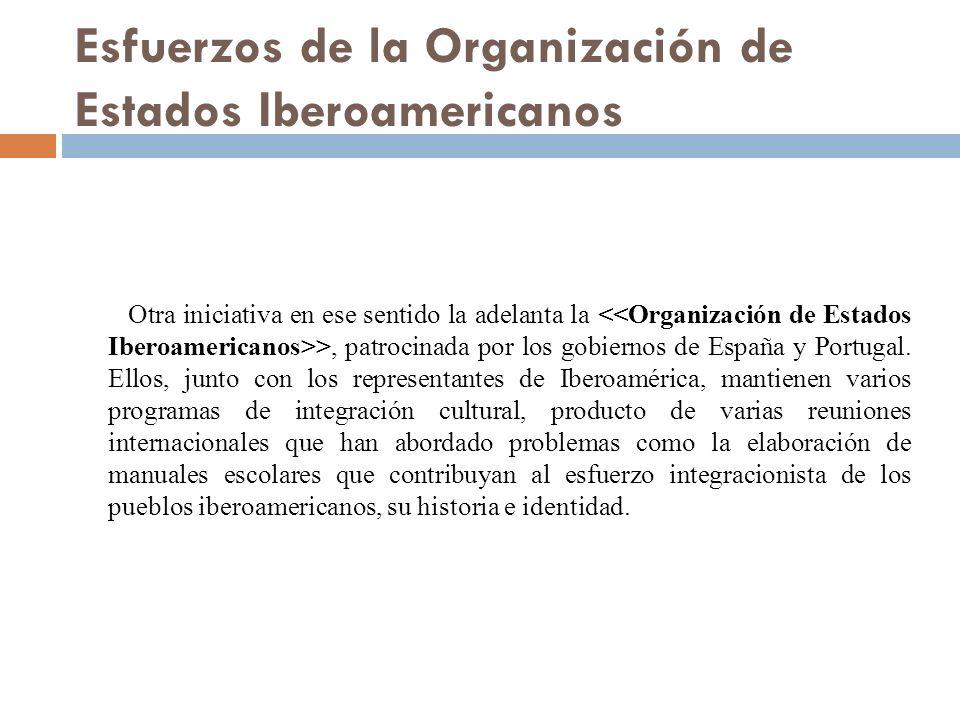 Esfuerzos de la Organización de Estados Iberoamericanos Otra iniciativa en ese sentido la adelanta la >, patrocinada por los gobiernos de España y Portugal.
