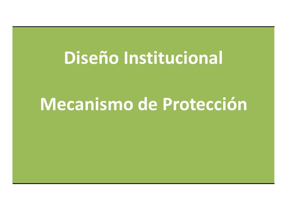 Diseño Institucional Mecanismo de Protección
