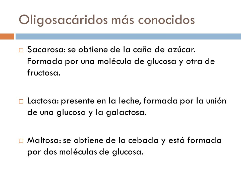 Oligosacáridos más conocidos Sacarosa: se obtiene de la caña de azúcar. Formada por una molécula de glucosa y otra de fructosa. Lactosa: presente en l