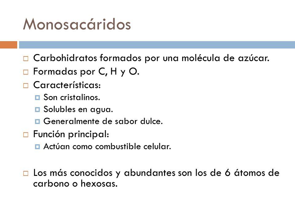 Monosacáridos Carbohidratos formados por una molécula de azúcar. Formadas por C, H y O. Características: Son cristalinos. Solubles en agua. Generalmen