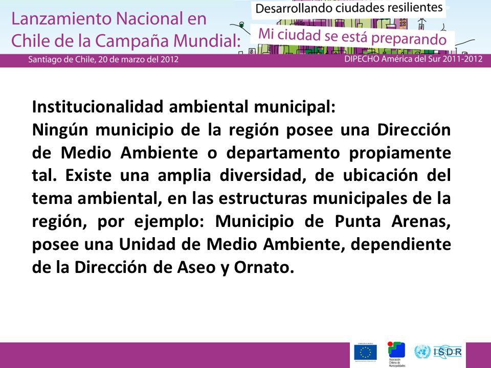 Institucionalidad ambiental municipal: Ningún municipio de la región posee una Dirección de Medio Ambiente o departamento propiamente tal. Existe una