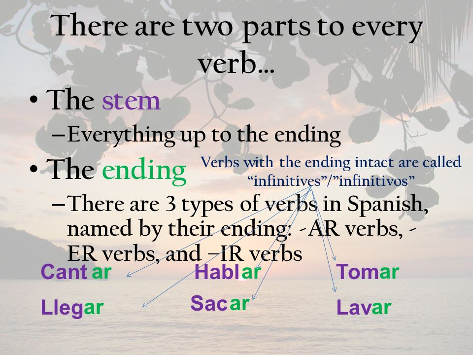 There are two parts to every verb… The stem – Everything up to the ending The ending – There are 3 types of verbs in Spanish, named by their ending: -AR verbs, - ER verbs, and –IR verbs Lleg CantHablTom Lav Sac ar Verbs with the ending intact are called infinitives/infinitivos