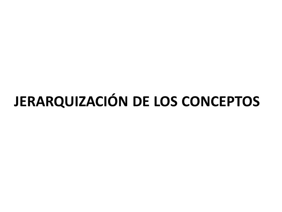 JERARQUIZACIÓN DE LOS CONCEPTOS