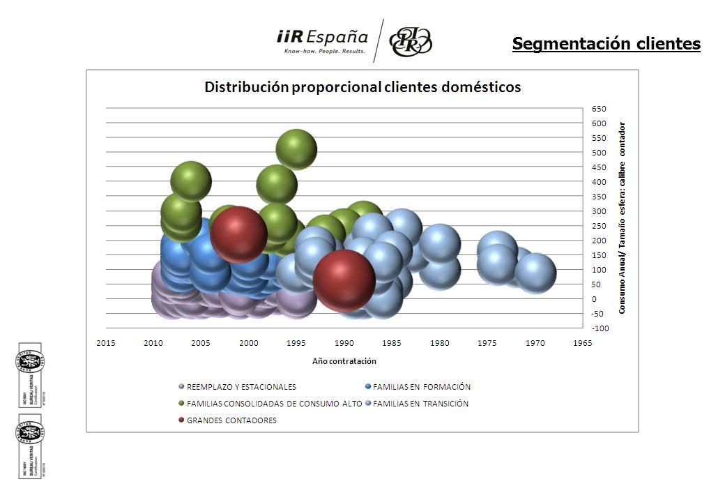 Análisis Cluster Domésticos Segmentación clientes