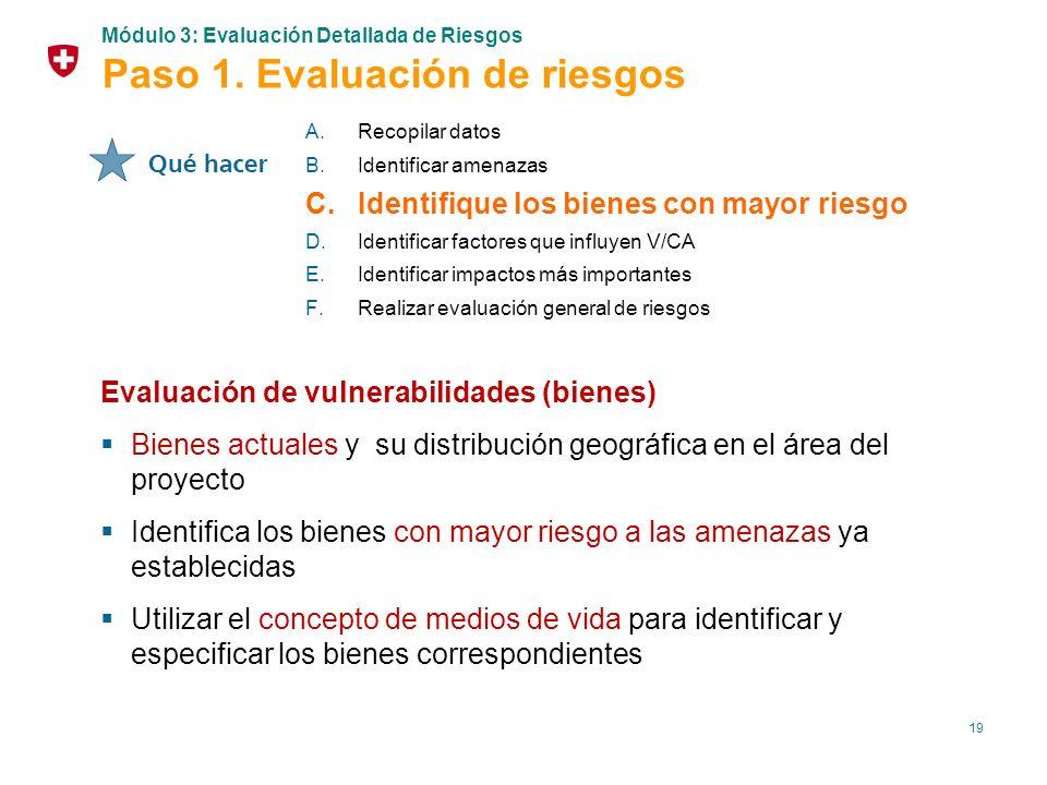19 Evaluación de vulnerabilidades (bienes) Bienes actuales y su distribución geográfica en el área del proyecto Identifica los bienes con mayor riesgo