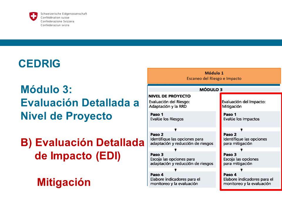 CEDRIG Módulo 3: Evaluación Detallada a Nivel de Proyecto B) Evaluación Detallada de Impacto (EDI) Mitigación