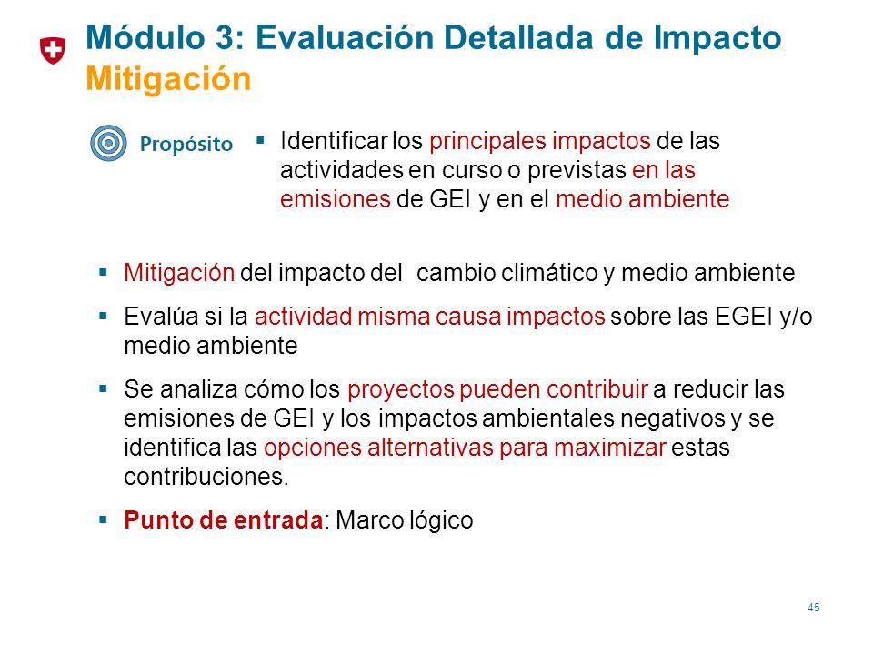 45 Identificar los principales impactos de las actividades en curso o previstas en las emisiones de GEI y en el medio ambiente Mitigación del impacto