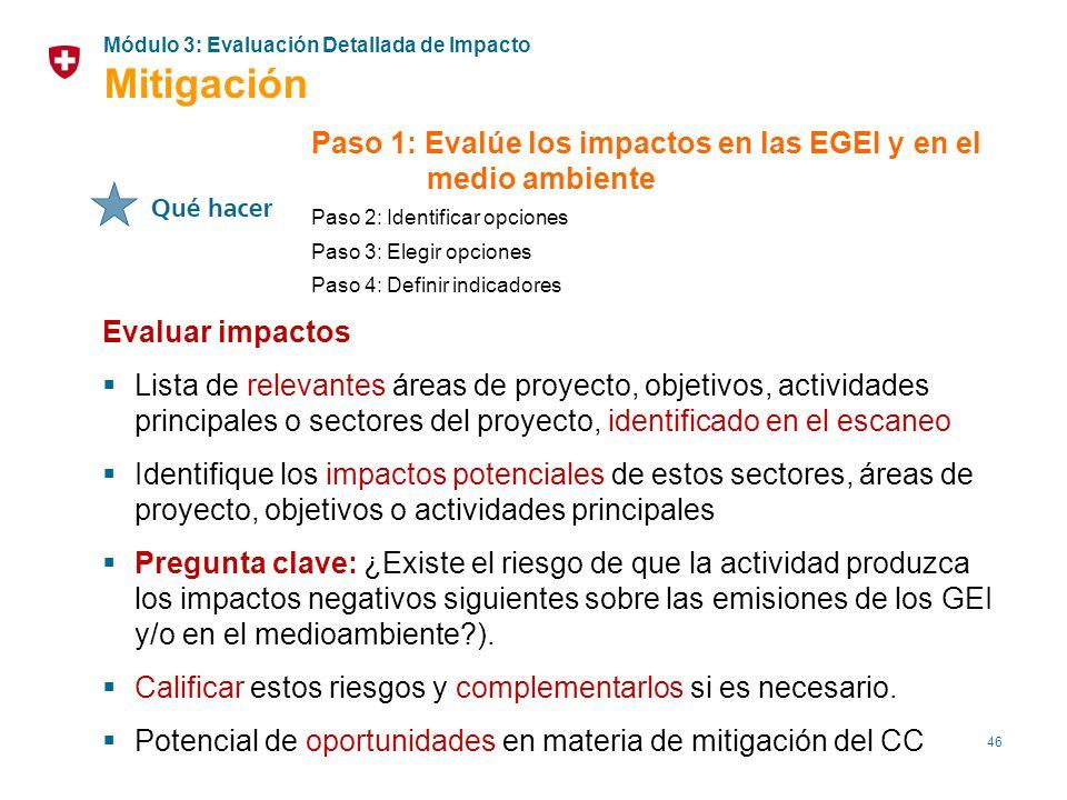 46 Paso 1: Evalúe los impactos en las EGEI y en el medio ambiente Paso 2: Identificar opciones Paso 3: Elegir opciones Paso 4: Definir indicadores Eva