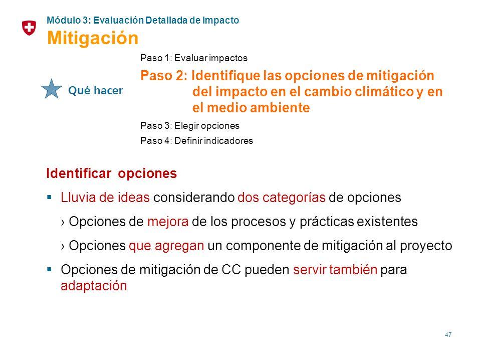 47 Identificar opciones Lluvia de ideas considerando dos categorías de opciones Opciones de mejora de los procesos y prácticas existentes Opciones que
