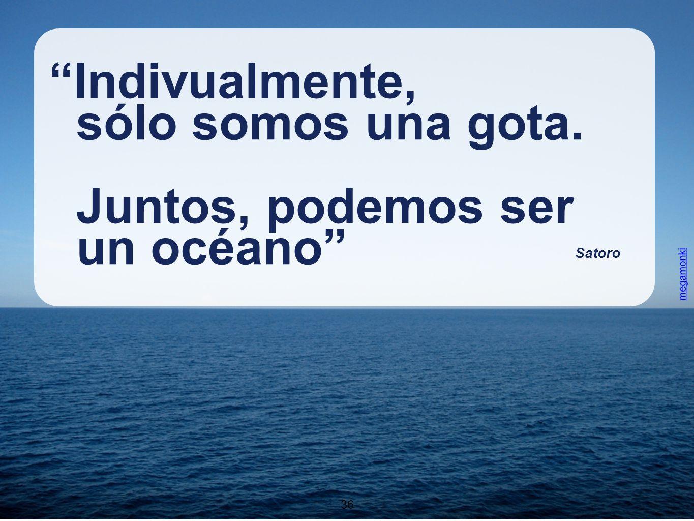 36 Indivualmente, sólo somos una gota. Juntos, podemos ser un océano Satoro 36 megamonki