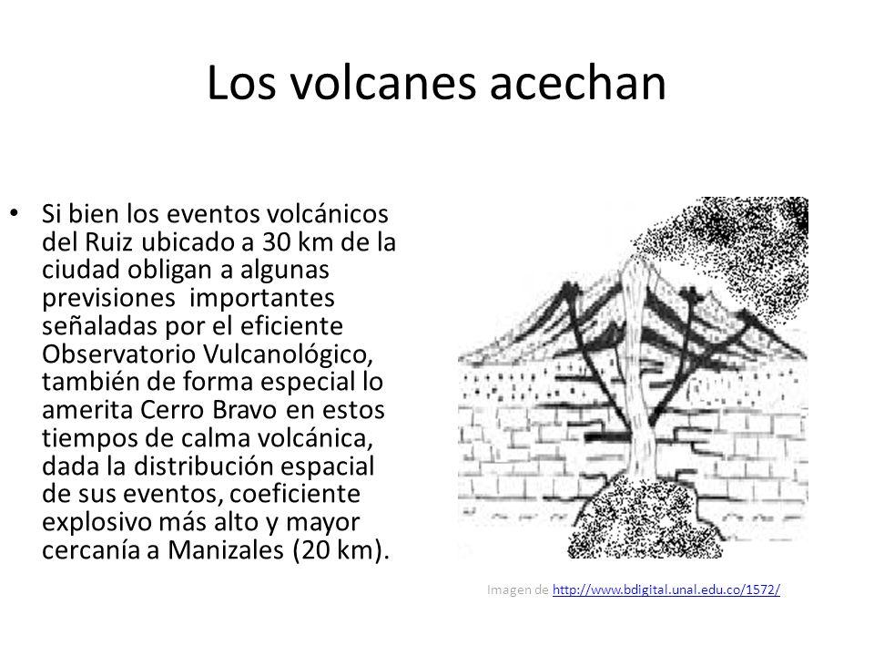 Los volcanes acechan Si bien los eventos volcánicos del Ruiz ubicado a 30 km de la ciudad obligan a algunas previsiones importantes señaladas por el eficiente Observatorio Vulcanológico, también de forma especial lo amerita Cerro Bravo en estos tiempos de calma volcánica, dada la distribución espacial de sus eventos, coeficiente explosivo más alto y mayor cercanía a Manizales (20 km).