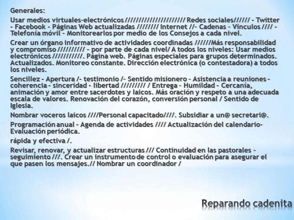 Generales: Usar medios virtuales–electrónicos ////////////////////// Redes sociales////// - Twitter - Facebook - Páginas Web actualizadas //////// Internet //– Cadenas – Vínculos //// - Telefonía móvil – Monitorearlos por medio de los Consejos a cada nivel.