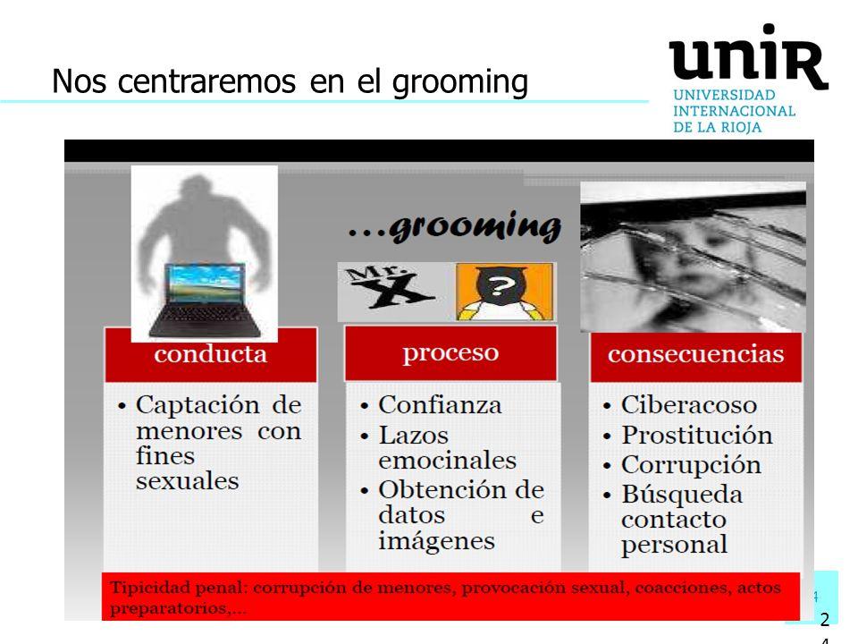 24 Nos centraremos en el grooming 24