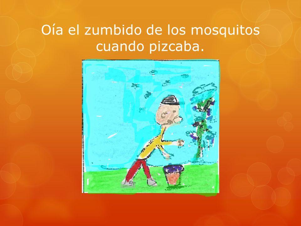 Oía el zumbido de los mosquitos cuando pizcaba.