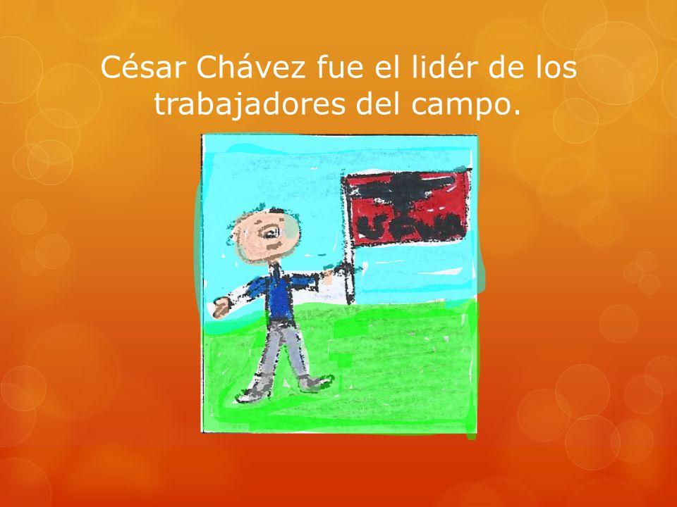 César Chávez fue el lidér de los trabajadores del campo.