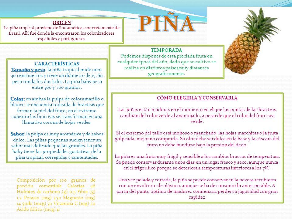 ORIGEN La piña tropical proviene de Sudamérica, concretamente de Brasil. Allí fue donde la encontraron los colonizadores españoles y portugueses TEMPO
