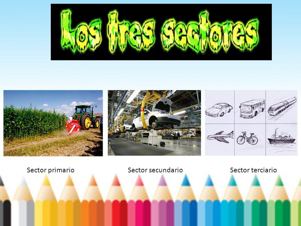 Sector primarioSector secundarioSector terciario