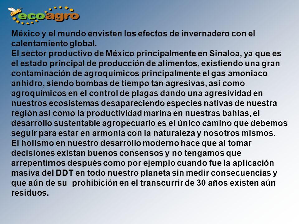 México y el mundo envisten los efectos de invernadero con el calentamiento global.