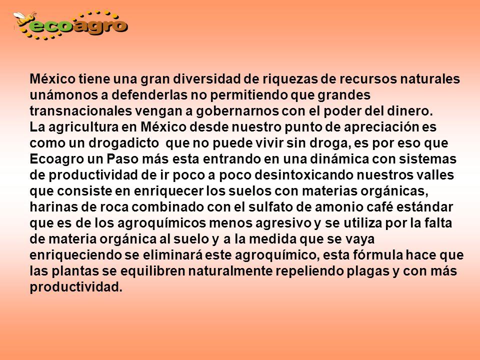 México tiene una gran diversidad de riquezas de recursos naturales unámonos a defenderlas no permitiendo que grandes transnacionales vengan a gobernarnos con el poder del dinero.