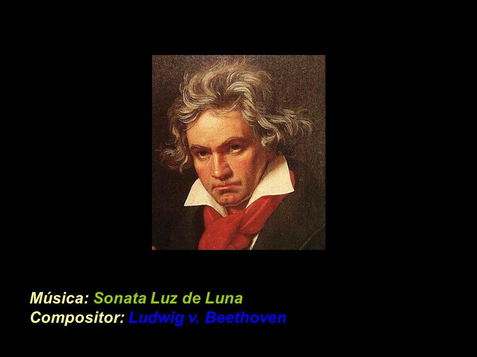 Música: Sonata Luz de Luna Compositor: Ludwig v. Beethoven