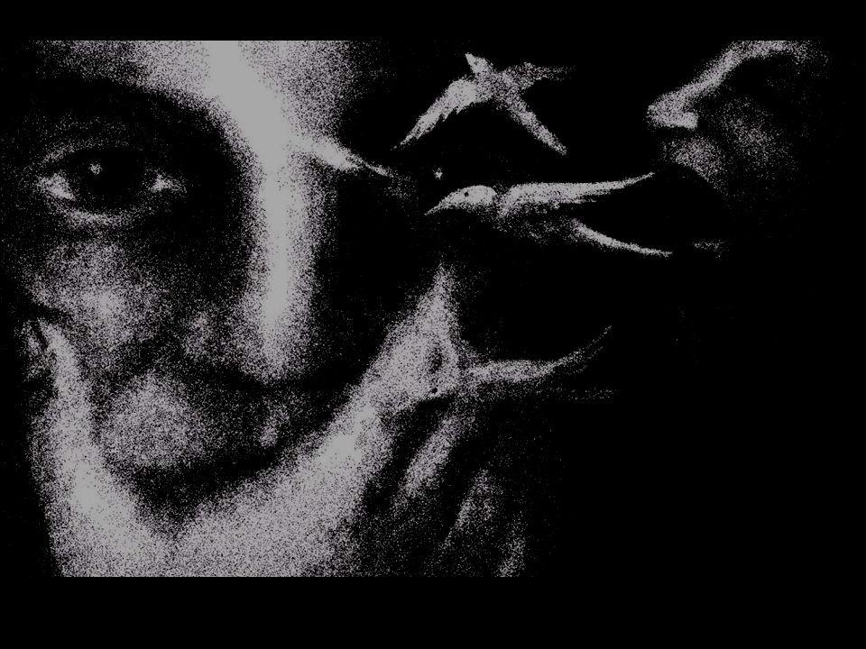 En palabras de Andoni García Arriola, de la COAG, El territorio español, deplorablemente, ha sido estos años pionero y campo de pruebas de los cultivos transgénicos en la Unión Europea y la población agraria esta sufriendo presiones constantes (y falsas promesas), para que sus campos se llenen de variedades transgénicas, destruyendo así el modelo de agricultura que la sociedad les esta demandando.