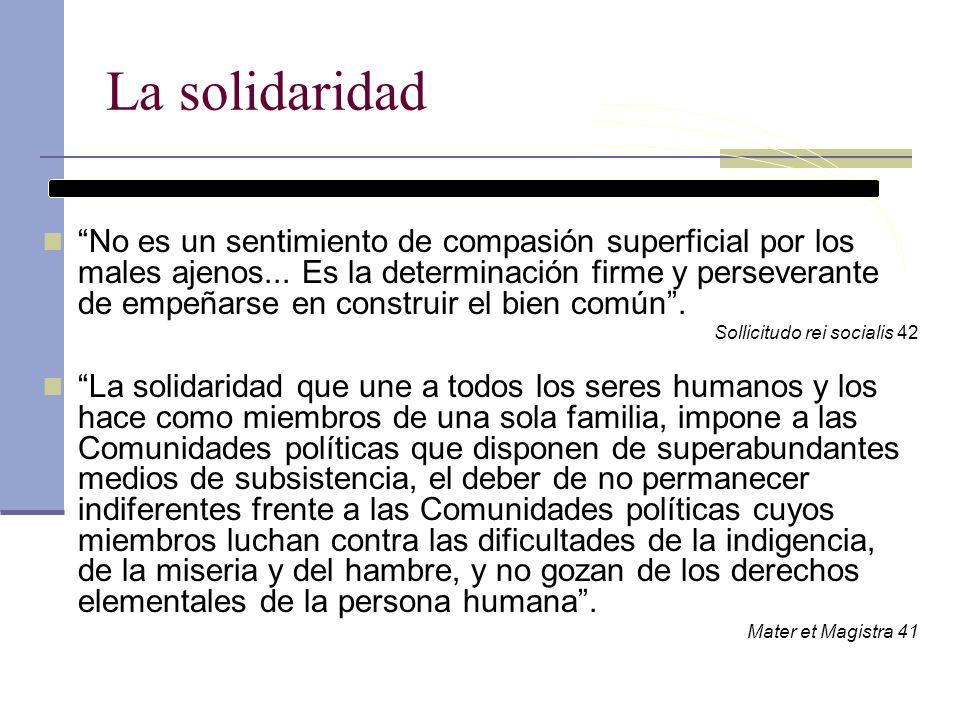 La solidaridad No es un sentimiento de compasión superficial por los males ajenos... Es la determinación firme y perseverante de empeñarse en construi