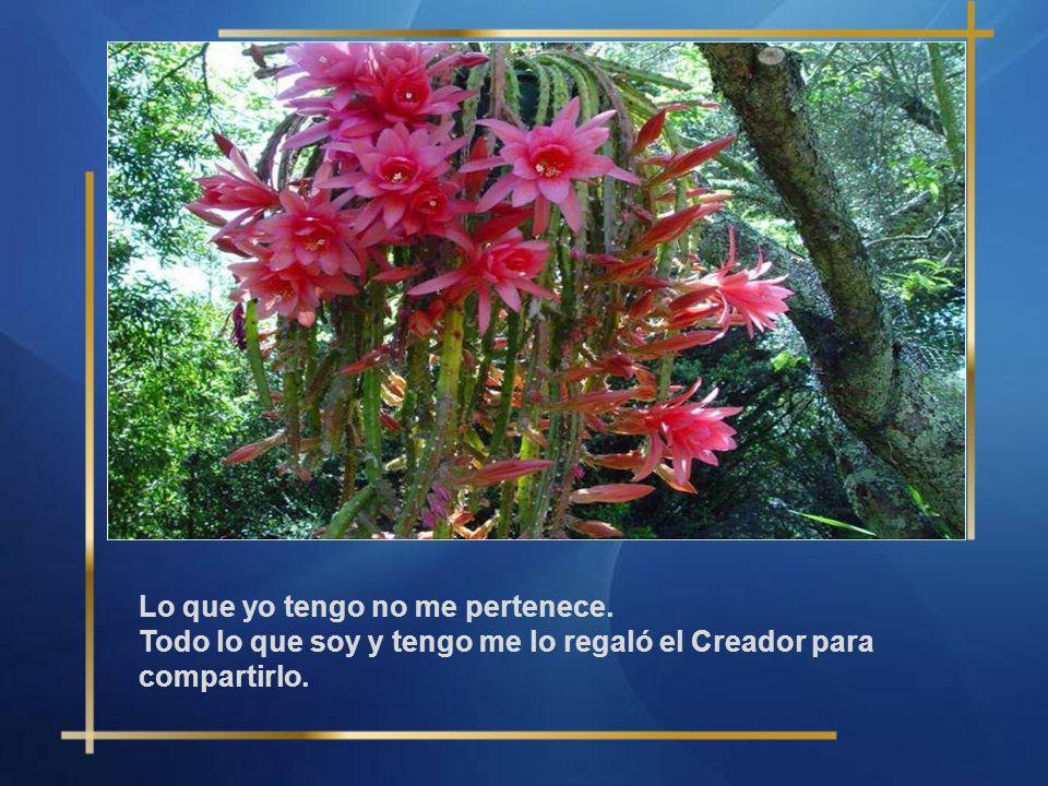 Lo que yo tengo no me pertenece. Todo lo que soy y tengo me lo regaló el Creador para compartirlo.