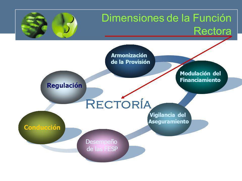 Regulación Armonización de la Provisión Modulación del Financiamiento Vigilancia del Aseguramiento Conducción Rectoría Dimensiones de la Función Recto