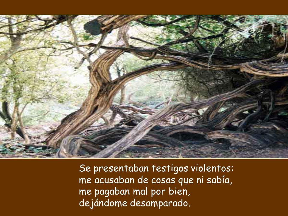 Se presentaban testigos violentos: me acusaban de cosas que ni sabía, me pagaban mal por bien, dejándome desamparado.
