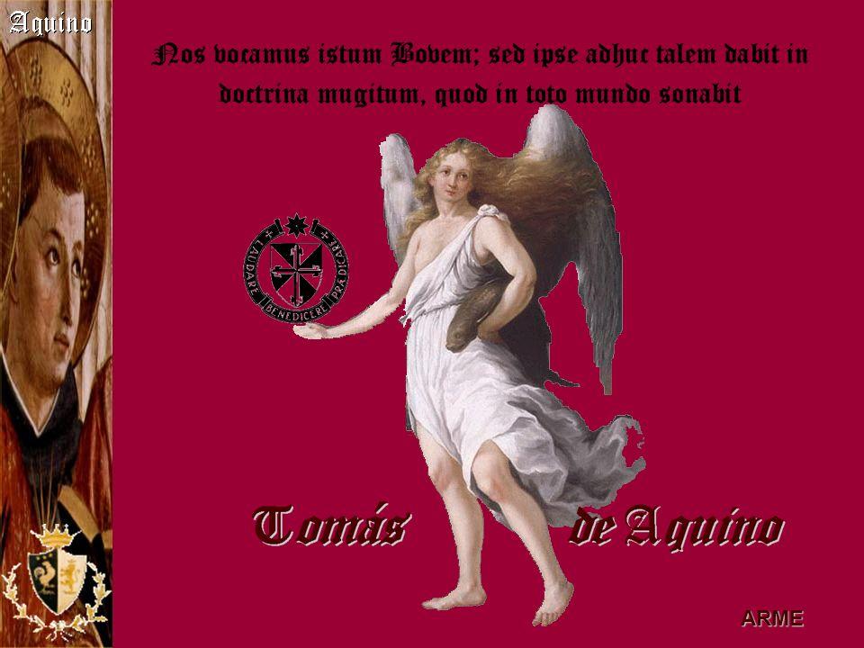 Ejerció como profesor en Colonia, en la Corte Pontificia, Nápoles y París, la universidad más importante de la época.