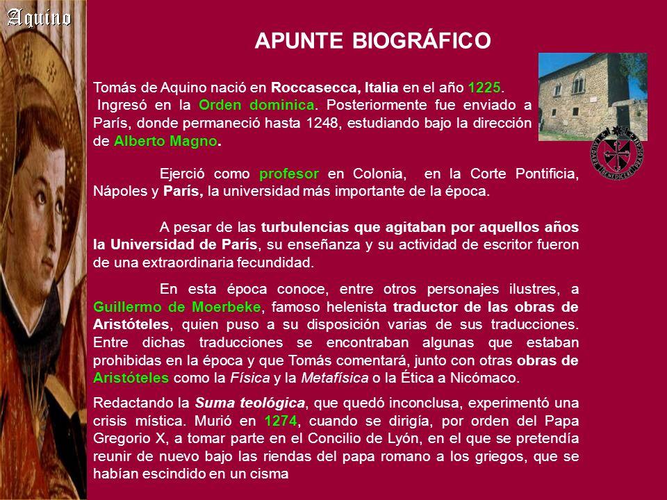 Ejerció como profesor en Colonia, en la Corte Pontificia, Nápoles y París, la universidad más importante de la época. A pesar de las turbulencias que