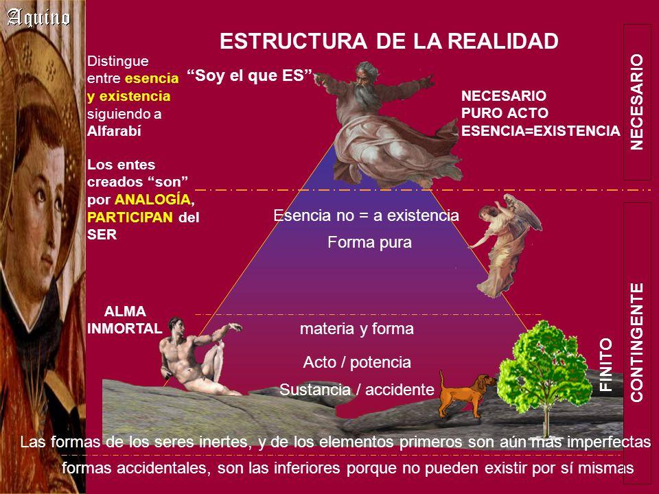ESTRUCTURA DE LA REALIDAD Distingue entre esencia y existencia siguiendo a Alfarabí materia y forma Acto / potencia Sustancia / accidente Forma pura f