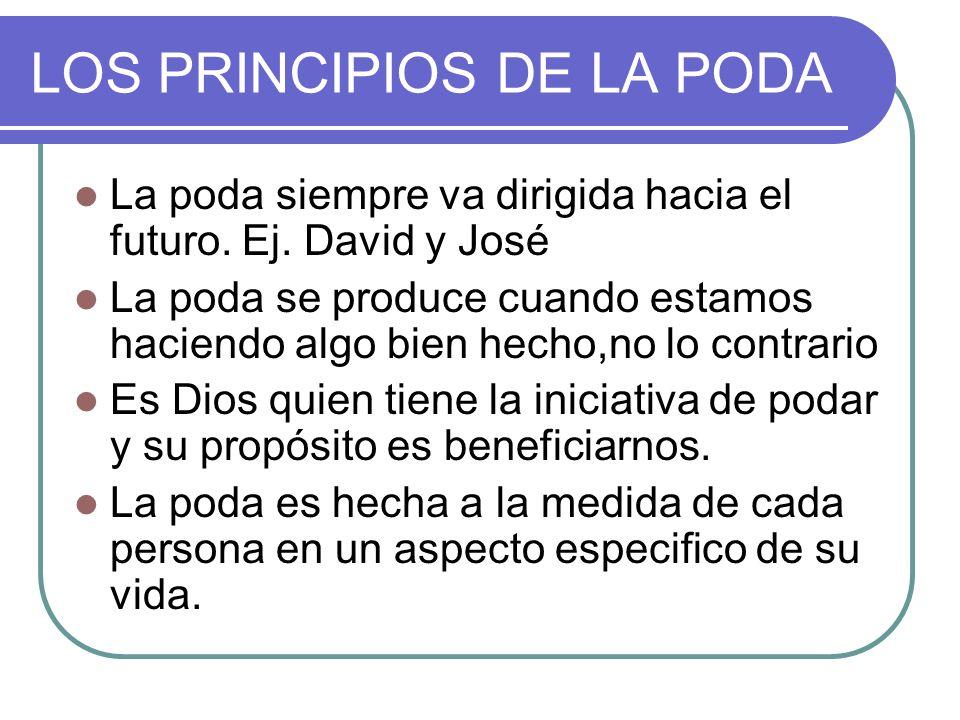 LOS PRINCIPIOS DE LA PODA La poda siempre va dirigida hacia el futuro. Ej. David y José La poda se produce cuando estamos haciendo algo bien hecho,no