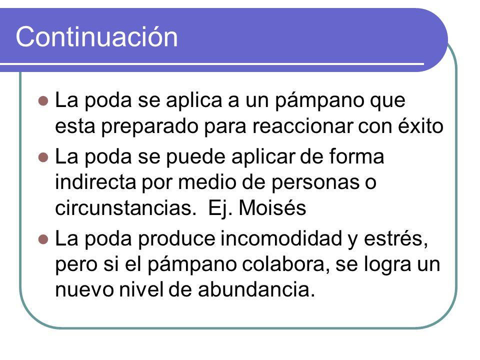 Continuación La poda se aplica a un pámpano que esta preparado para reaccionar con éxito La poda se puede aplicar de forma indirecta por medio de personas o circunstancias.