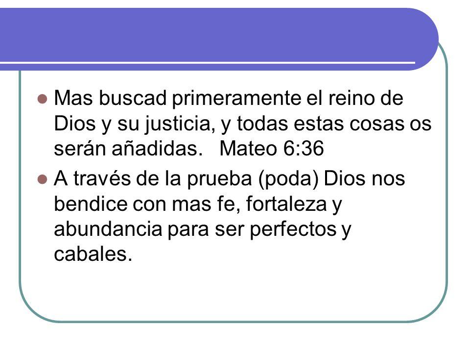 Mas buscad primeramente el reino de Dios y su justicia, y todas estas cosas os serán añadidas. Mateo 6:36 A través de la prueba (poda) Dios nos bendic