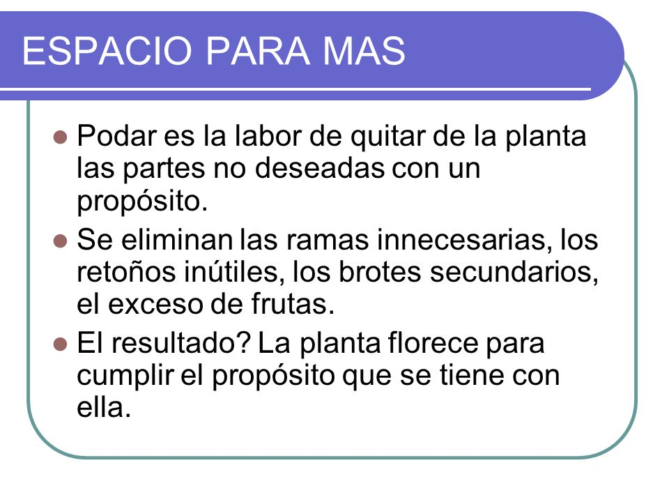 ESPACIO PARA MAS Podar es la labor de quitar de la planta las partes no deseadas con un propósito. Se eliminan las ramas innecesarias, los retoños inú