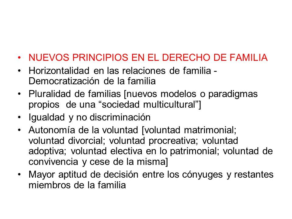 NUEVOS PRINCIPIOS EN EL DERECHO DE FAMILIA Horizontalidad en las relaciones de familia - Democratización de la familia Pluralidad de familias [nuevos