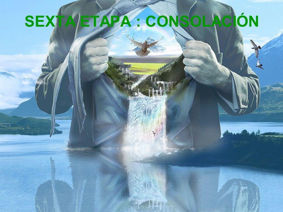 QUINTA ETAPA : CONTEMPLACIÓN