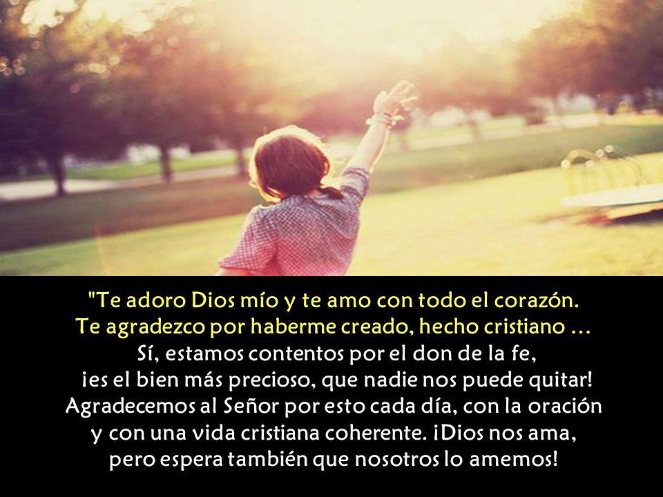 Quisiera que cada uno sintiese la alegría de ser cristiano. En una bella oración que se recita cotidianamente en la mañana se dice: