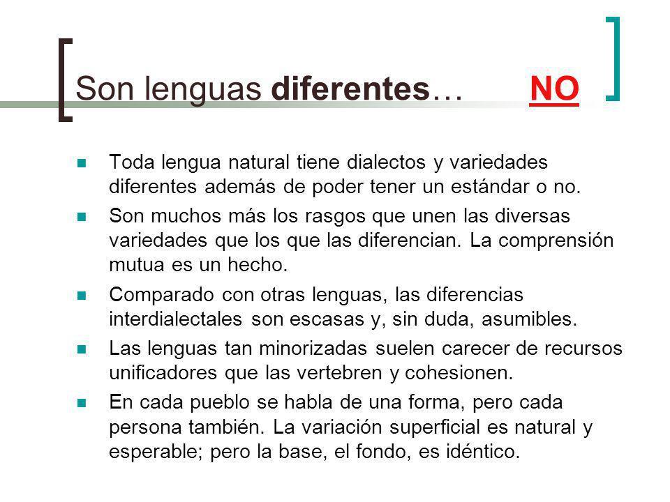 Son lenguas diferentes… NO Toda lengua natural tiene dialectos y variedades diferentes además de poder tener un estándar o no. Son muchos más los rasg