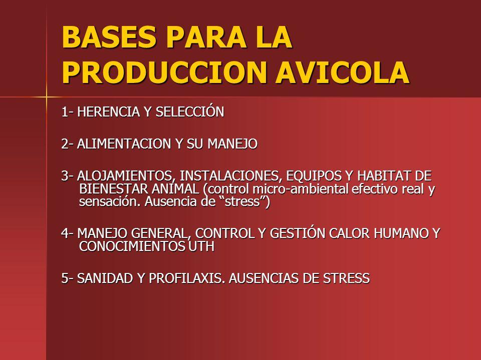 BASES PARA LA PRODUCCION AVICOLA 1- HERENCIA Y SELECCIÓN 2- ALIMENTACION Y SU MANEJO 3- ALOJAMIENTOS, INSTALACIONES, EQUIPOS Y HABITAT DE BIENESTAR AN
