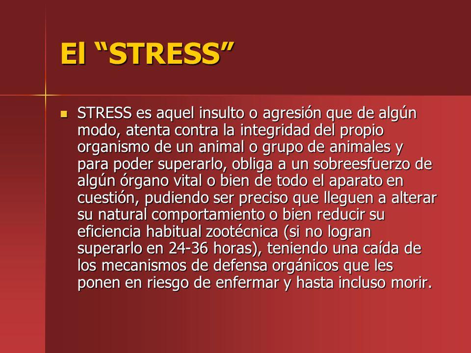 El STRESS STRESS es aquel insulto o agresión que de algún modo, atenta contra la integridad del propio organismo de un animal o grupo de animales y pa