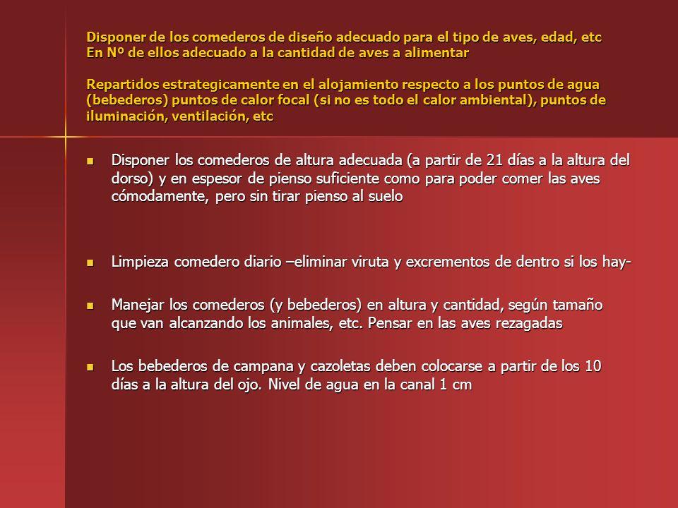 NO INTENTAR MANTENER NUNCA LA Tª AMTIENTAL, A COSTA DE ESCATIMAR LA VENTILACIÓN (OXIGENACIÓN).