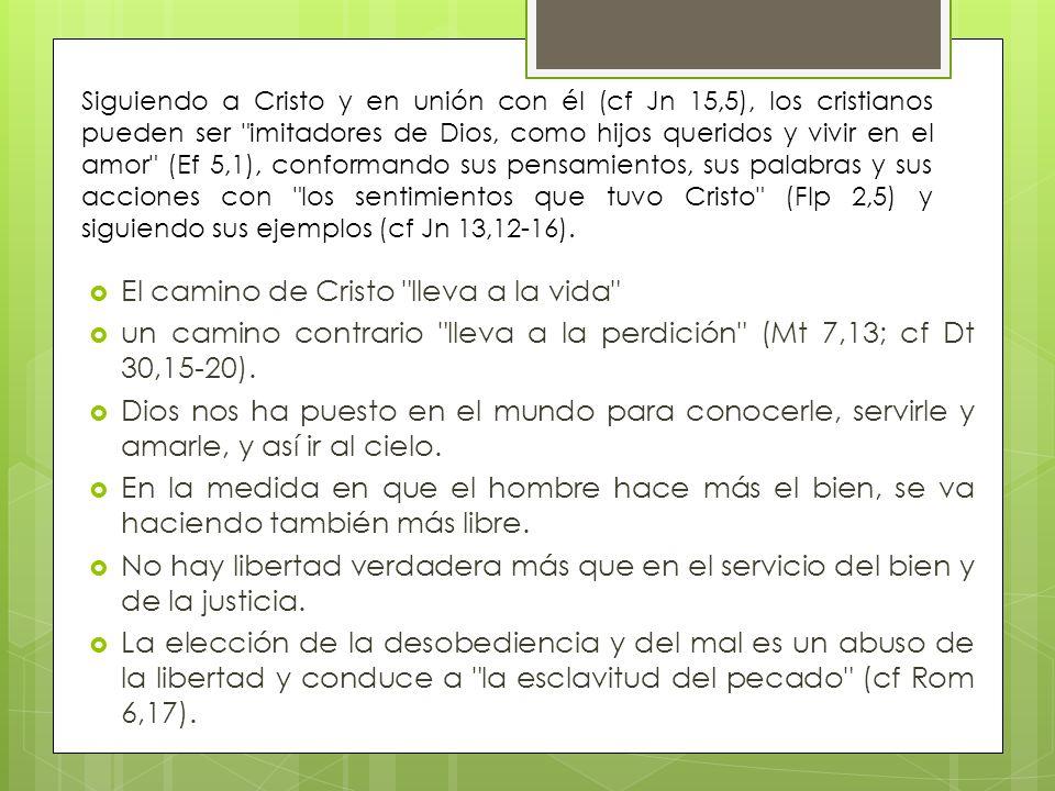 El camino de Cristo lleva a la vida un camino contrario lleva a la perdición (Mt 7,13; cf Dt 30,15-20).